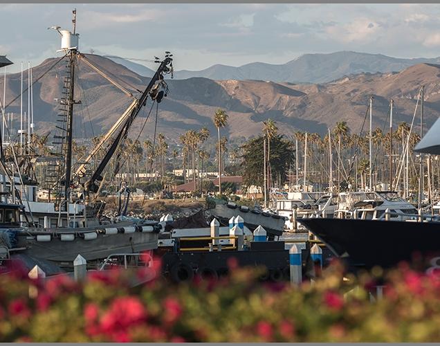 Ventura c