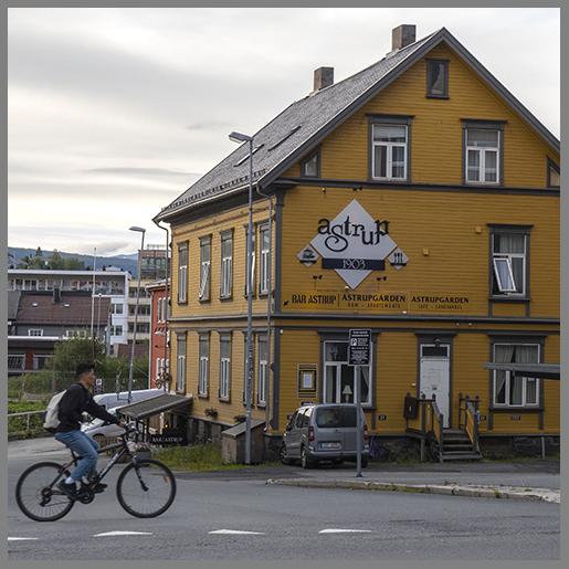 Narvik c