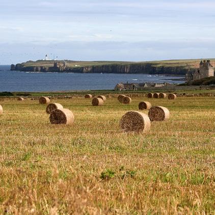 Skottland 2005 039