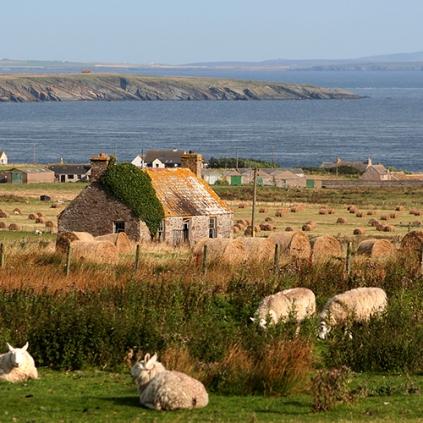 Skottland 2005 072