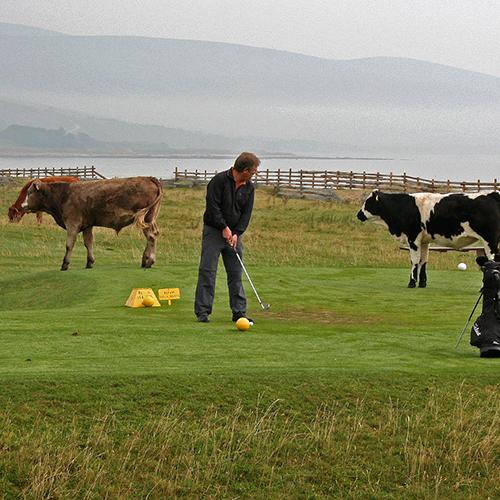 Skottland 2005 106